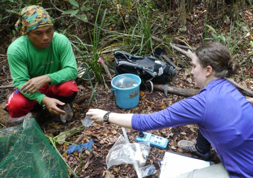 Sara Thornton and her Research Assistant Dudin conducting fish and water surveys in the Sabangau Peat-swamp Forest, Indonesia, 2014.