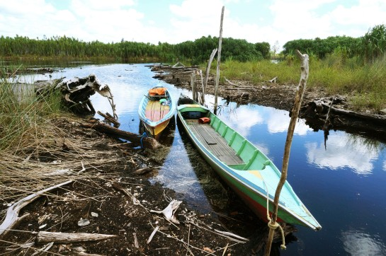 Heading into the forest for fish trapping, we leave our boats waiting on the peaty banks of the River Sabangau. Photo by Sara Thornton