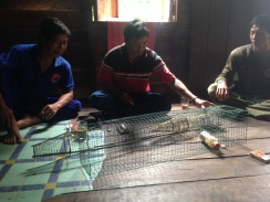Being shown local fishing traps in Pusaka (Taruna Jaya). Photo by Sara Thornton.