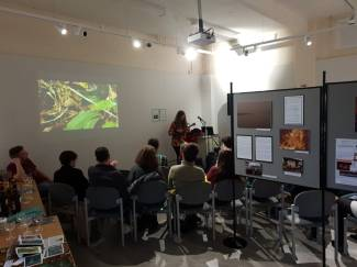 Jenny Hibberd performing, Into the Swamp exhibition